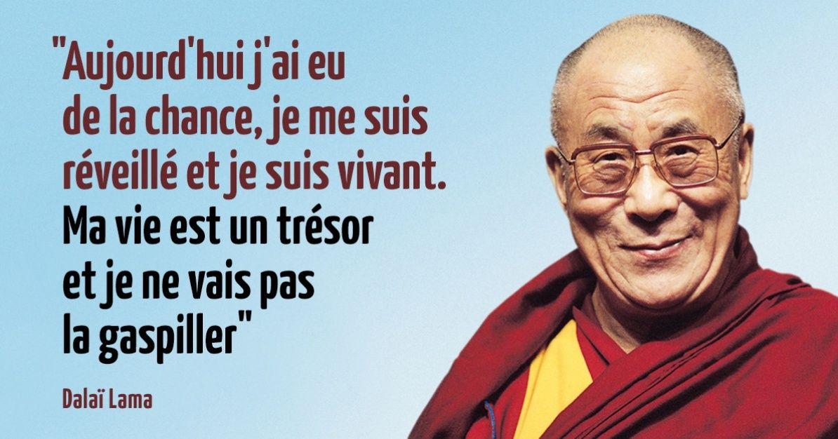 Les 15leçons devie duDalaï Lama