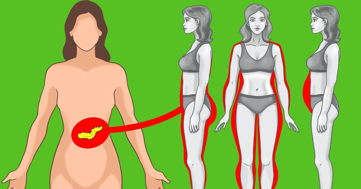 10 Conseils importants pour réduire ton taux d'insuline et perdre du poids