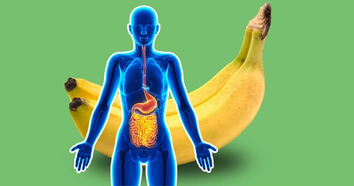 7Bienfaits des bananes sur lecorps humain