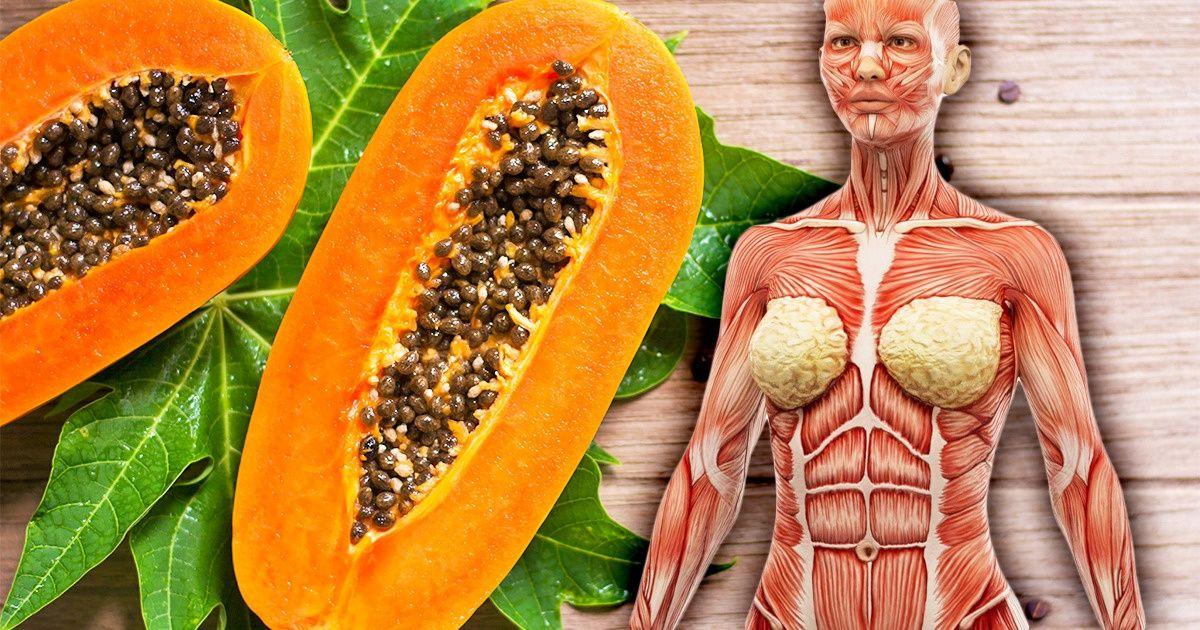 7 Choses qui peuvent arriver à ton corps si tu manges de la papaye une fois par semaine