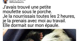 20+ Bébés animaux que tu auras du mal à oublier après les avoir rencontrés