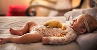 Cet artiste anglais photographie des nouveau-nés blottis contre des animaux, et les images sont tout simplement adorables