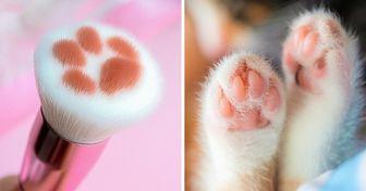 """Maintenant tu peux acheter des """"pinceaux-chats"""" qui te donneront l'impression d'être maquillée par un minet"""