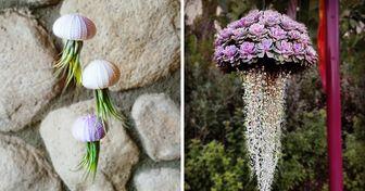 Des plantes grasses aériennes en forme de méduses qui vont transformer ton jardin en véritable aquarium