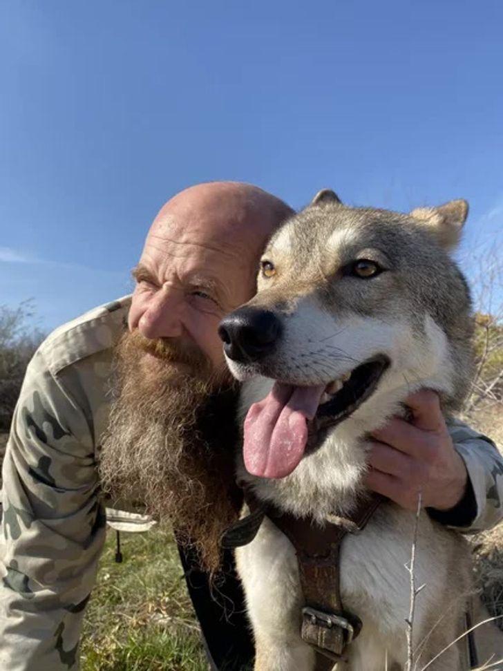 Après avoir été sauvé et recueilli par un homme, un louveteau mène à présent la vie d'un chien domestique ordinaire
