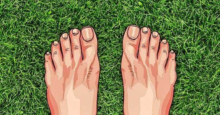 fourmi dans le pied